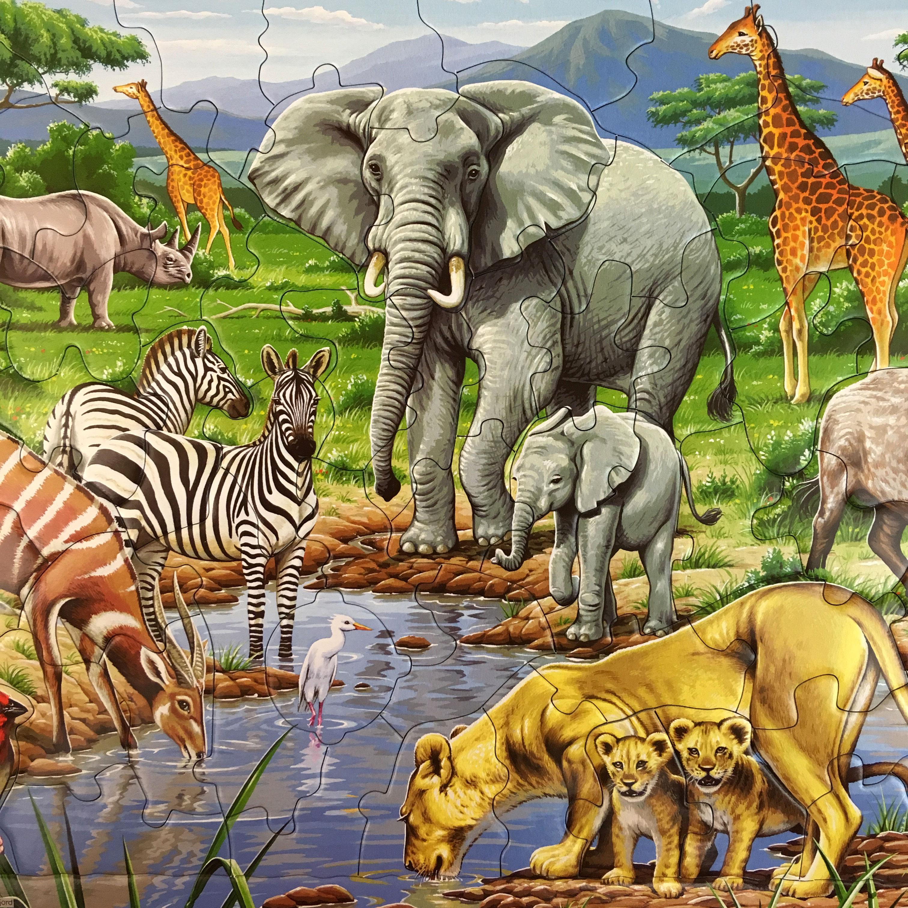 Животные саванны картинки и названия
