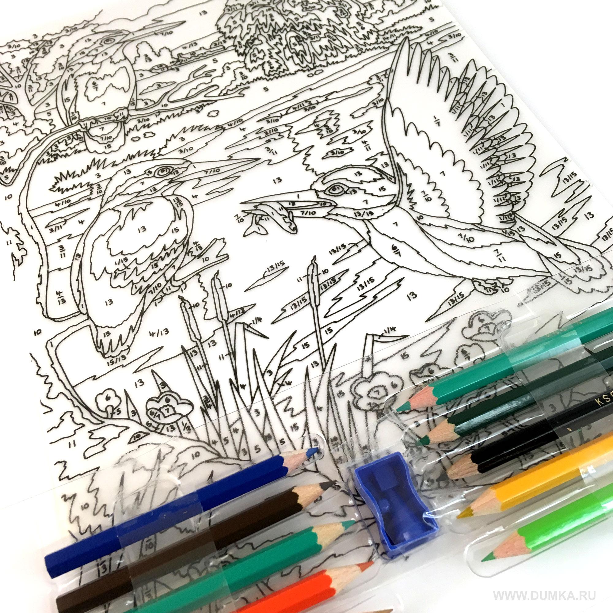 самом деле картинки по номерам карандашами стенды могут